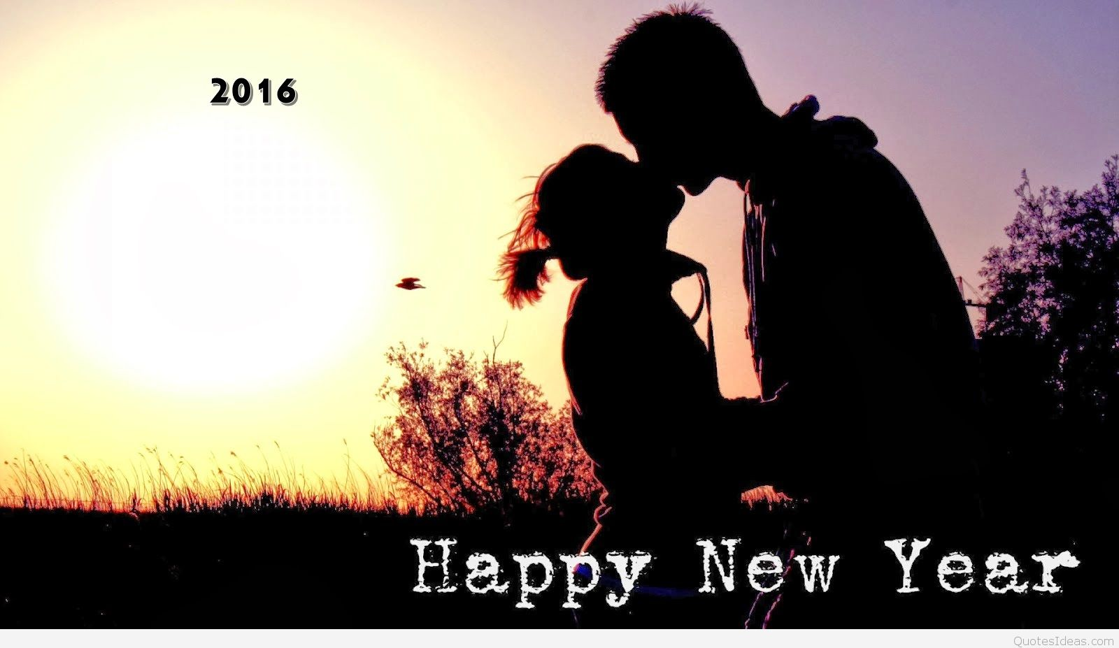 Happy New Year 2016 Love Pics