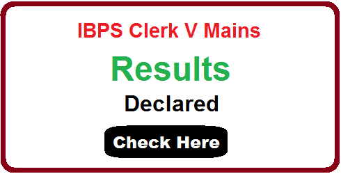 IBPS Clerk Main Result 2015 -2016
