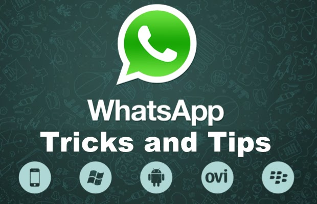 10 WhatsApp Tricks for Android, PC, IOS You Must Know