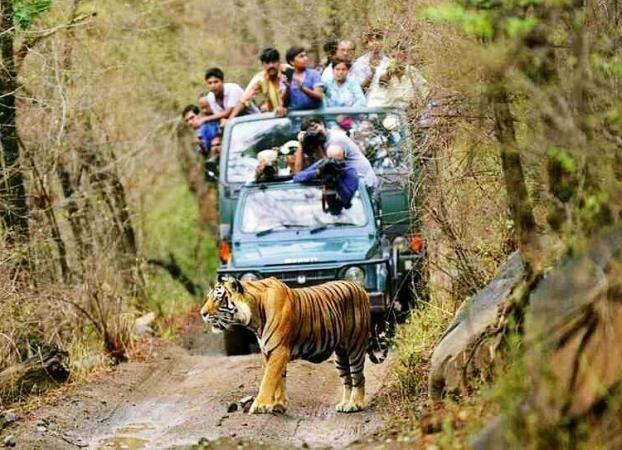 rajaji national park rishikesh