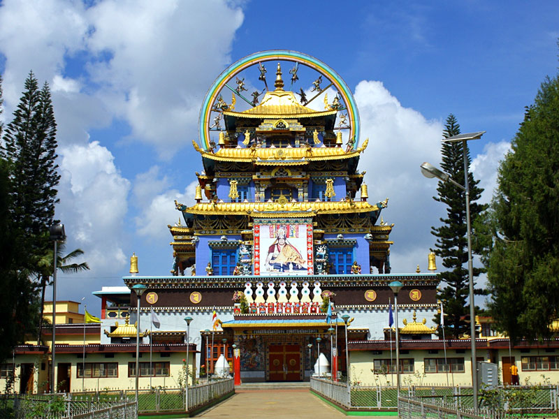 Tibetan coorg