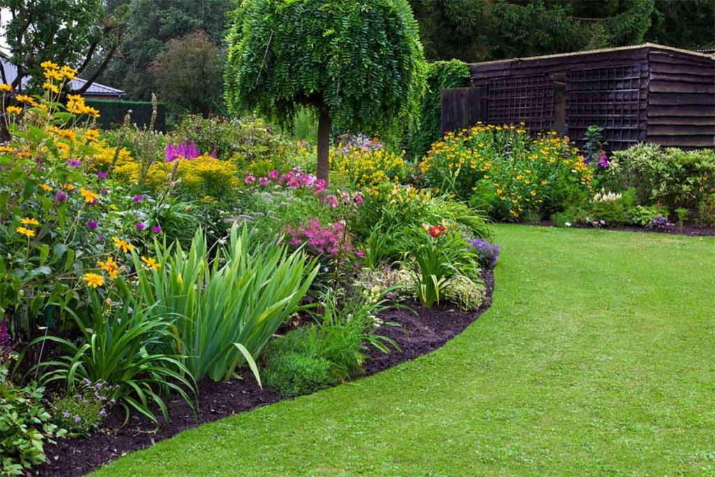 Eco-Friendly Landscaping