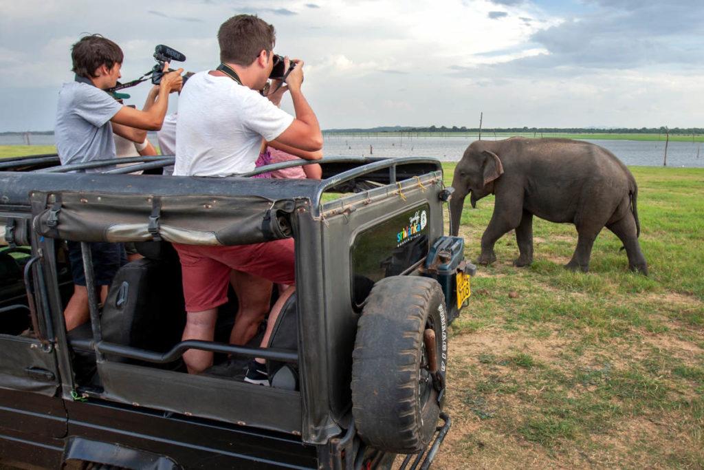 Safari at Kaudulla Park